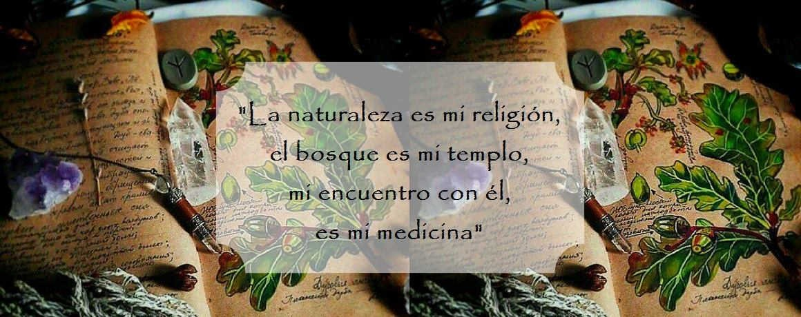 Rincon medicinal